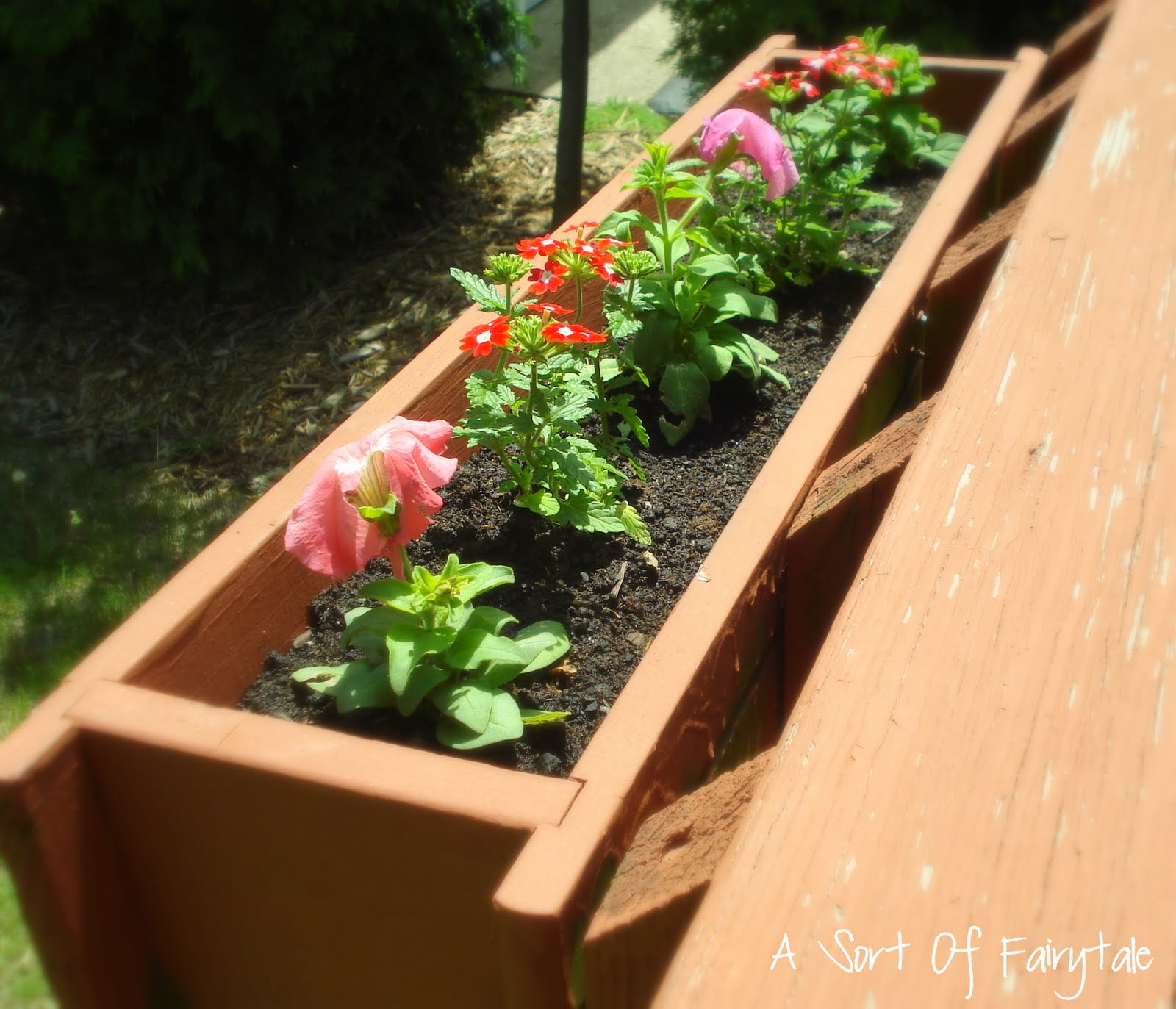 Deck Flower Box: A Sort Of Fairytale: Playing In The Dirt