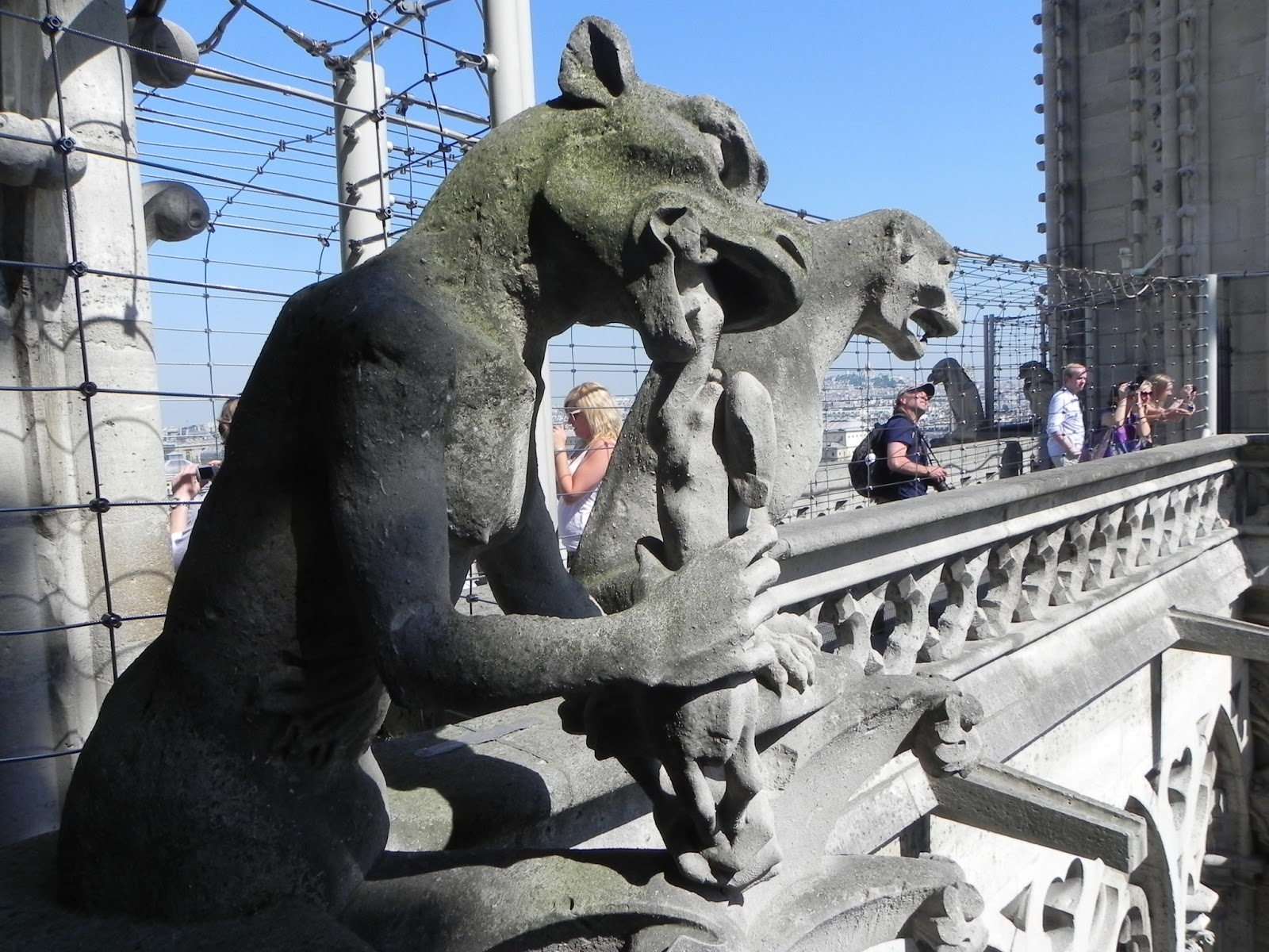 Armchair Travel With Martha Gargoyles At Notre Dame