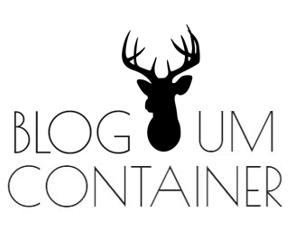 Um Container | Blog de moda, comportamento, beleza, resenhas de livros, filmes, séries e produtos.