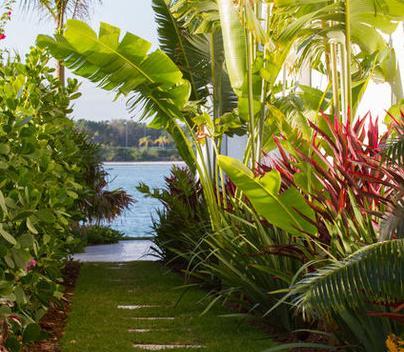 Fotos de jardin planta de casas for Casa y jardin bazaar 2013