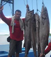 Ekstrim Bottom Fishing:  Kunci Sukses Mencari Sarang Monster