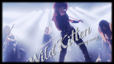 "Wild Kitten ""Going Crazy"" - Music Video"
