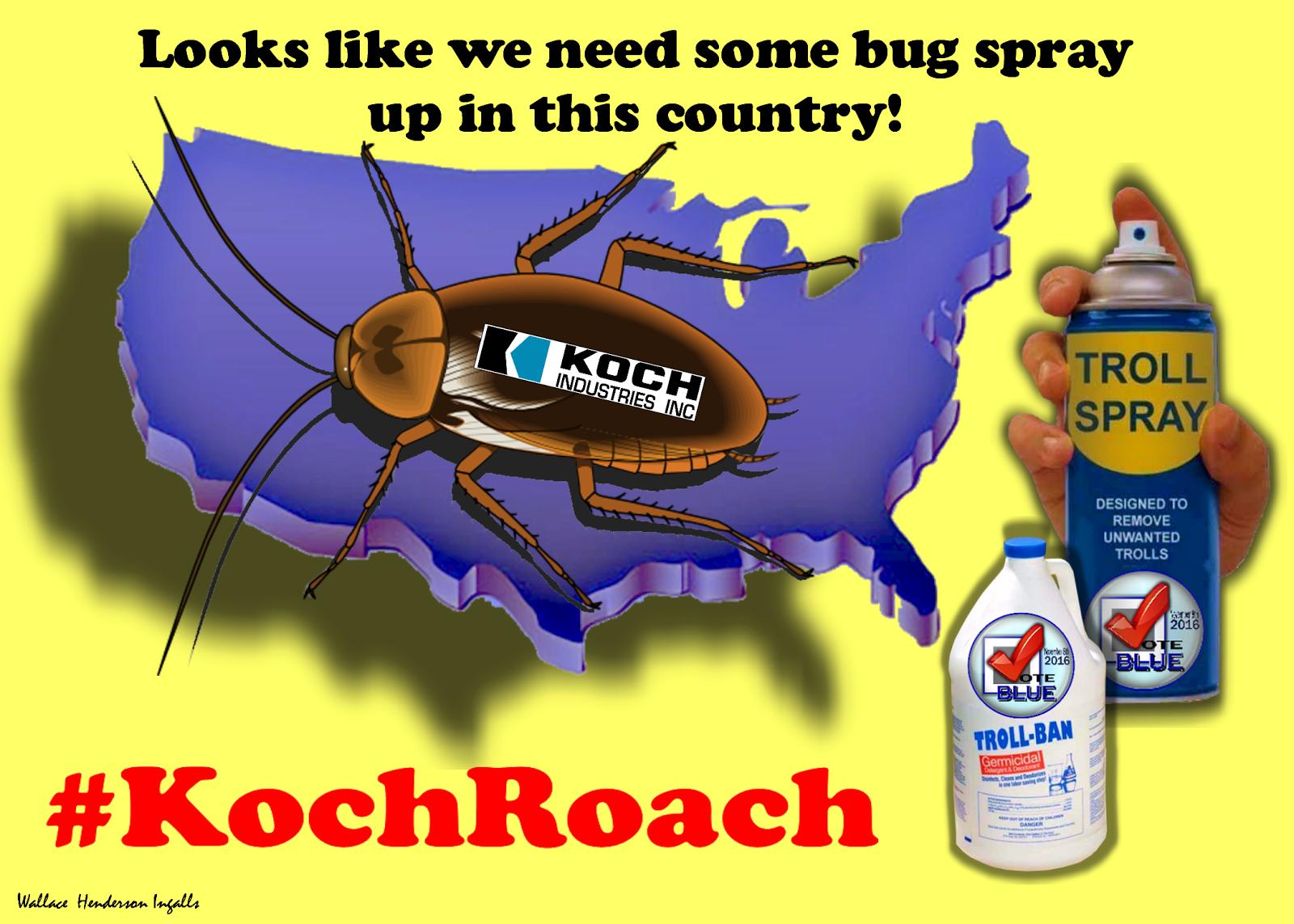#KochRoach!!!!