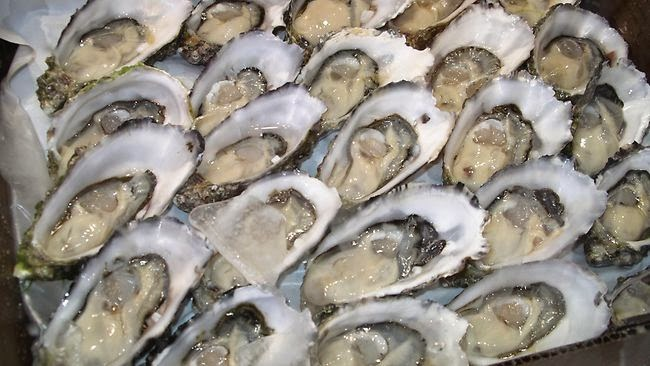 Health Benefits of Eating Oysters