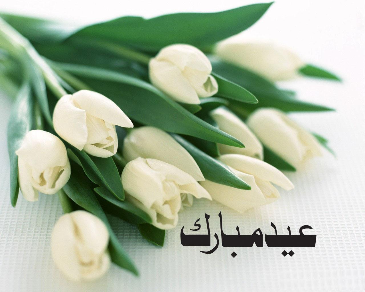Eid mubarak cards free download 091413 free download photos of eid mubarak greeting card kristyandbryce Choice Image