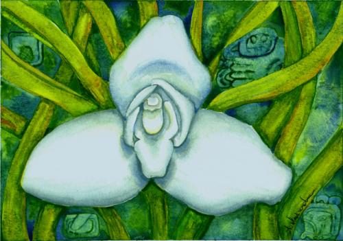 Monja blanca de guatemala para colorear - Imagui