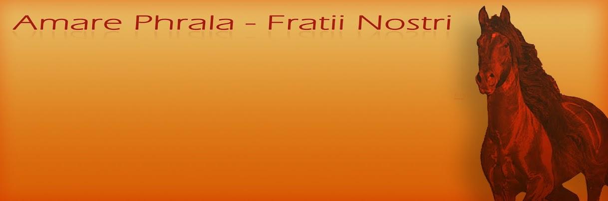 Amare Phrala - Fratii Nostri