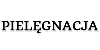 http://dreampacket.blogspot.com/search/label/Piel%C4%99gnacja