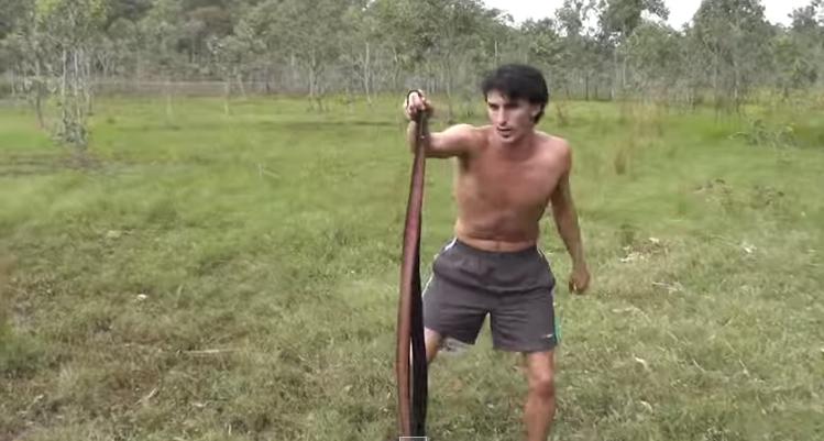 Caccia al lepre con serpenti