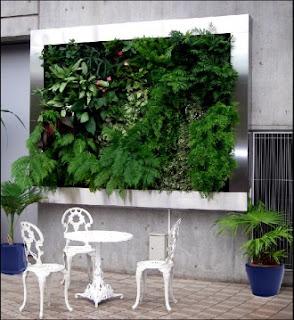 Jardines verticales monterrey abril 2012 - Macetas para jardines verticales ...