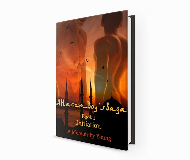 http://www.amazon.com/Initiation-Harem-Boys-Saga-Book-ebook/dp/B00KOEXWQQ/ref=la_B00CENKJKM_1_5?s=books&ie=UTF8&qid=1421655125&sr=1-5