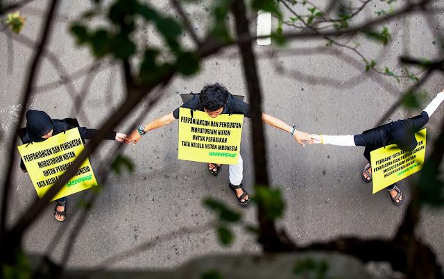 Greenpeace : SBY Harus Memperkuat Moratorium Hutan