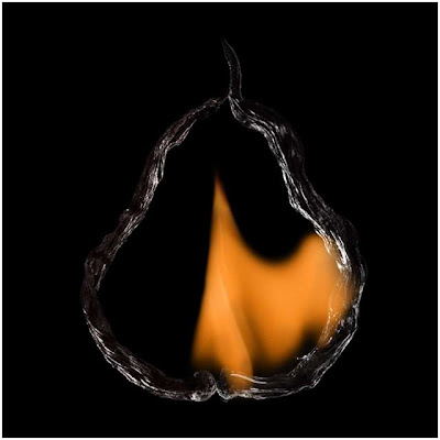 Shapes of Flames by Pol Tergejst Seen On www.coolpicturegallery.us