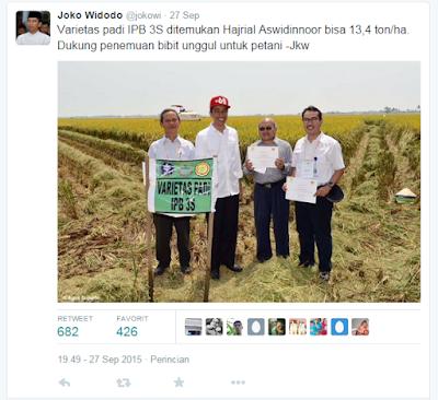 Padi IPB 3S dilaunching oleh presiden RI Joko Widodo
