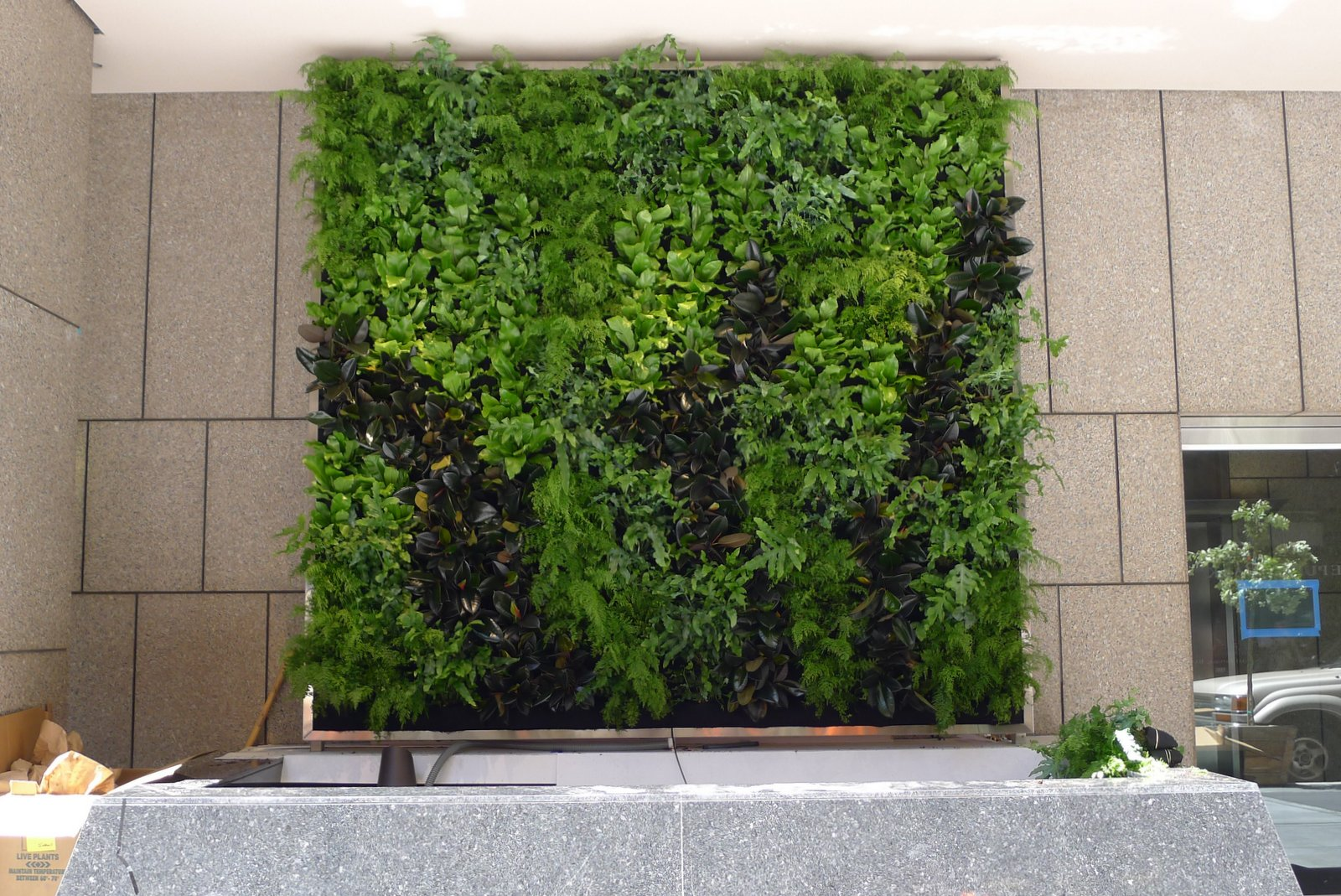 Plants on walls vertical garden systems june 2012 for Vertical garden wall systems
