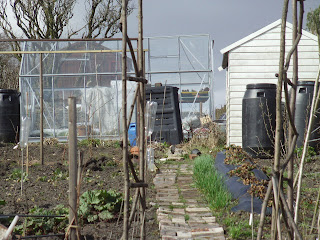 The Wartime Garden beds are being planned. Shame the weather can't be.