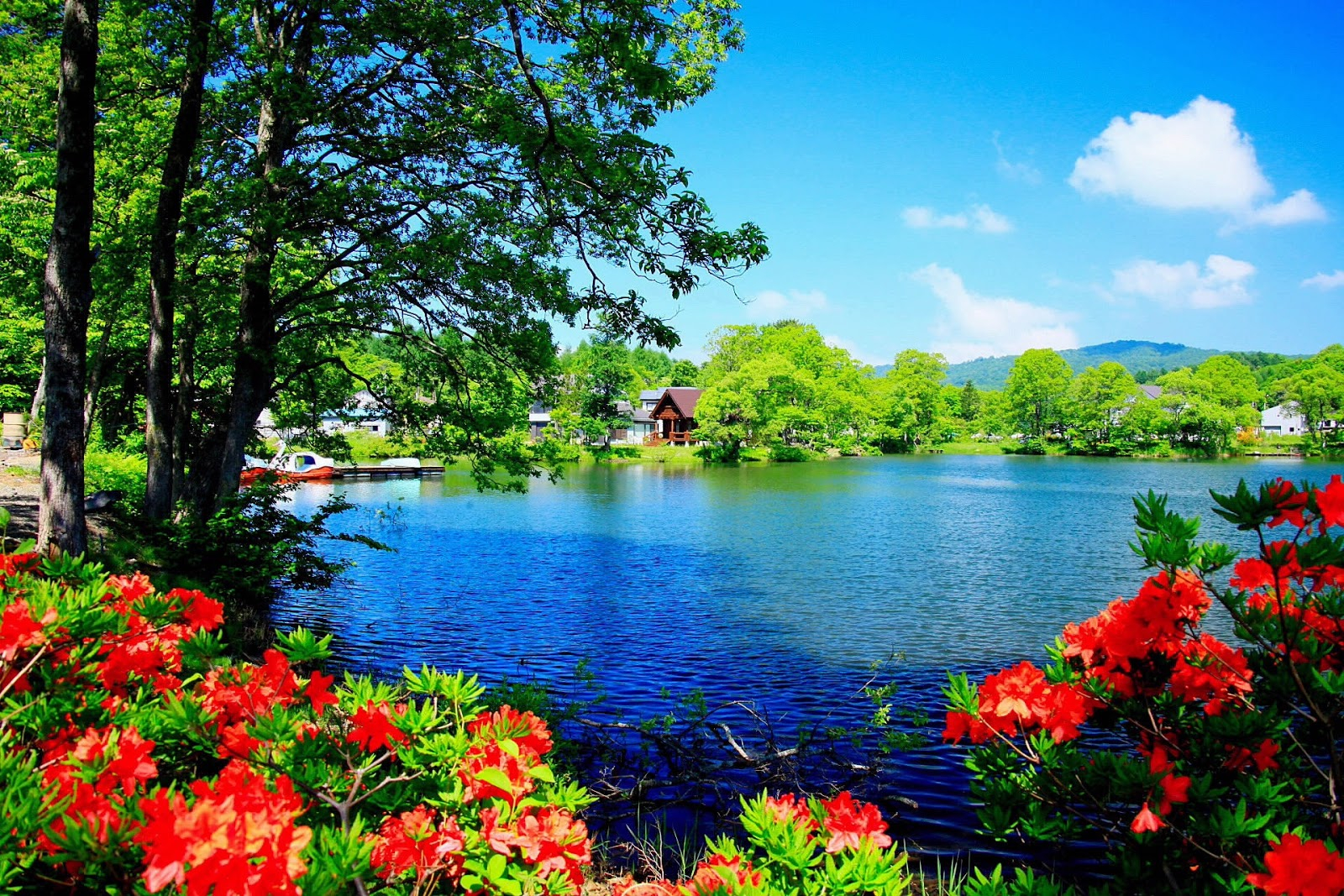 http://1.bp.blogspot.com/-jBpGD-Zy8Jk/Uu_xHvnnYPI/AAAAAAACJ7s/kT8RQI4RVbU/s1600/lago-de-agua-azul-clima-tropical-casas-paisajes-hermosos-naturales.jpg