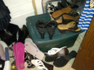 Before Shoe Organizer