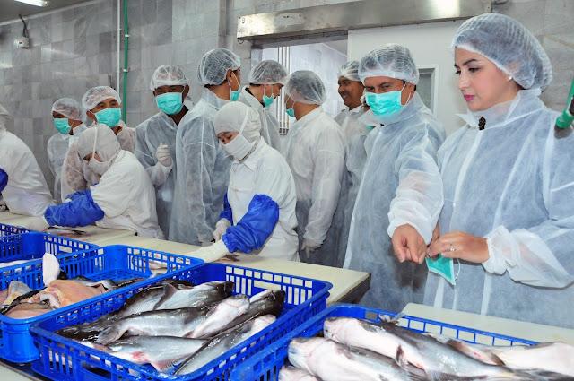 Batasi Kepemilikan Asing di Industri Pengolahan Ikan