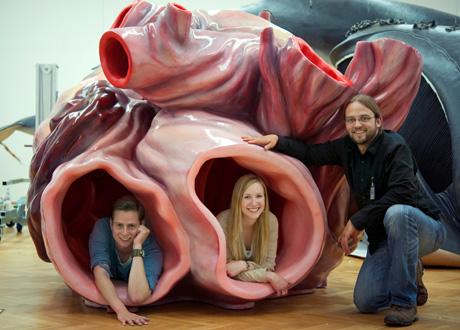 Tahukah Anda Jika Jantung Paus Biru Seberat 600 Kilogram