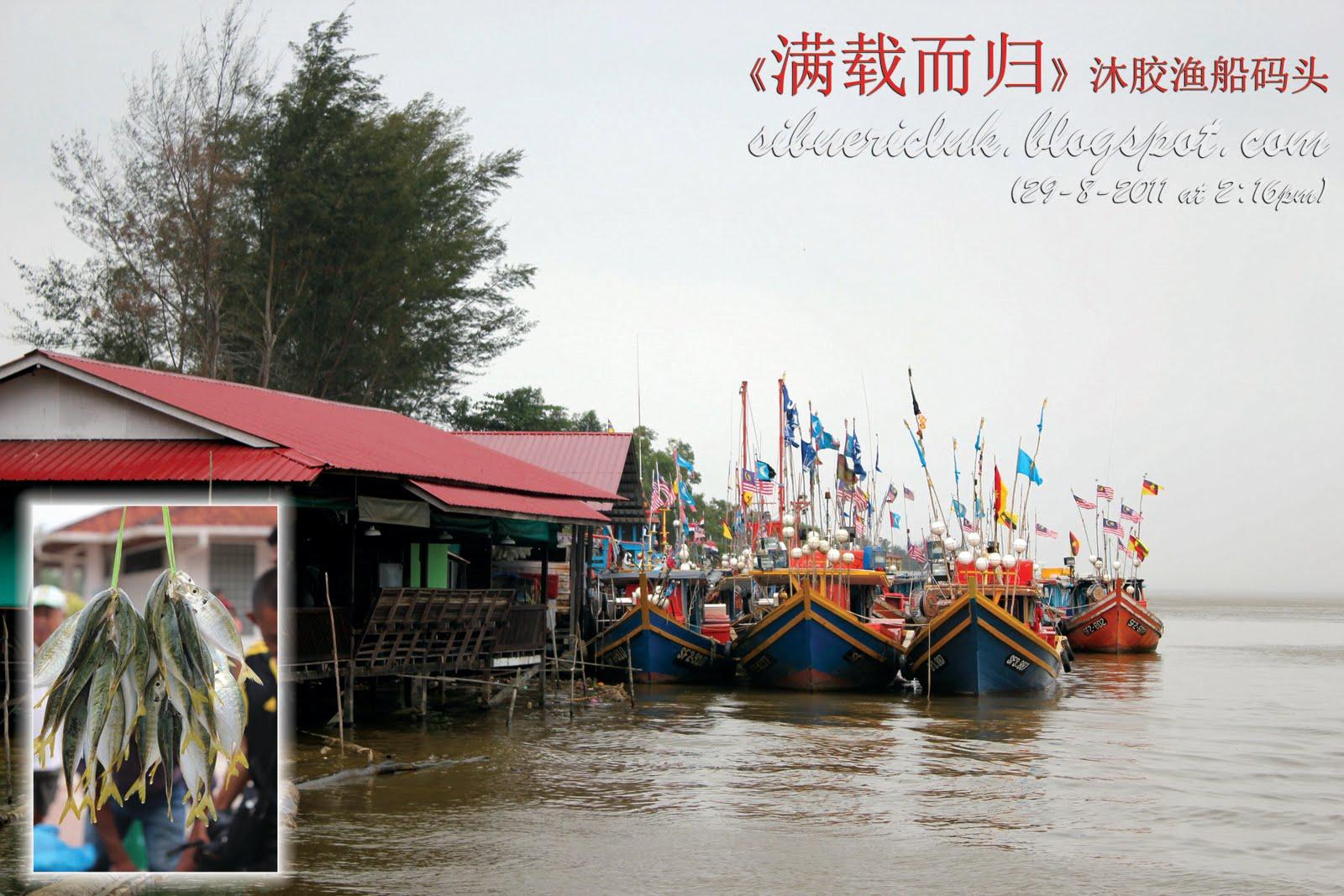 Image result for 木胶九月之旅 简介