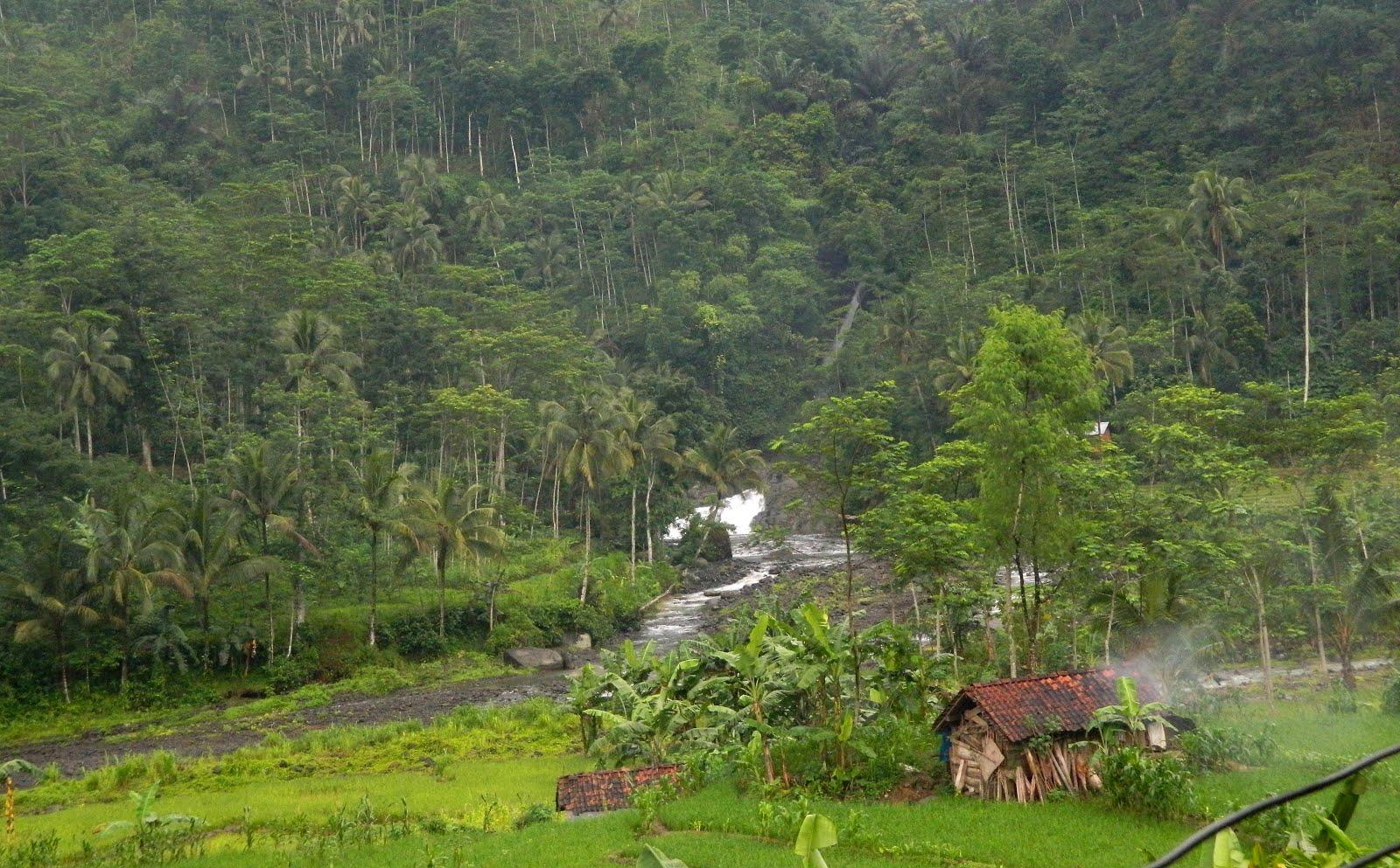 Desa Tanalum Purbalingga, Pesona Seribu Curug yang Menawan