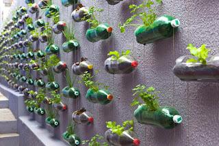 Δοχεία για γλάστρες φυτών και ιδέες