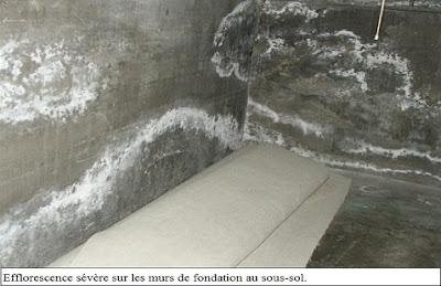Ma maison inspectée: Taches blanches sur les murs de maçonnerie