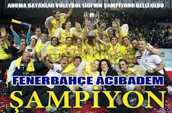 2010-2011 ABVL Şampiyonları