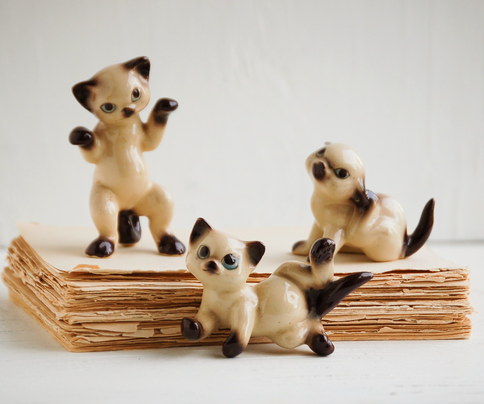 https://www.etsy.com/listing/186877394/vintage-siamese-kittens-siamese-cat?ref=shop_home_active_7