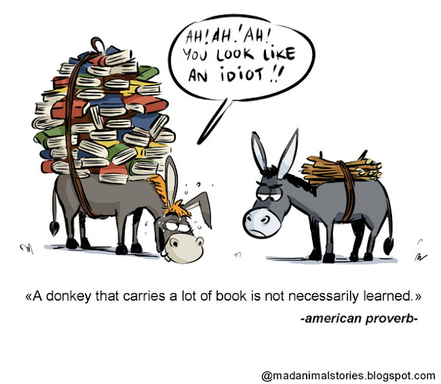 quote a donkey that carries a lot of book is not necessarily learned