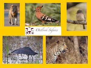 Outlook Safaris, natuurreizen Zuidelijk Afrika