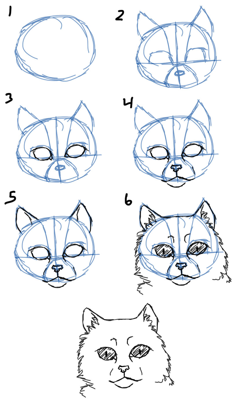 Uncategorized How To Draw A Cats Face savanna williams how to draw cats faces heads cat facesheads front view