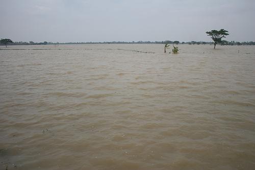 Citarum Meluap,  51 Desa di Karawang Terendam Banjir