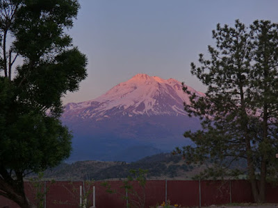 Shasta as the sun sets