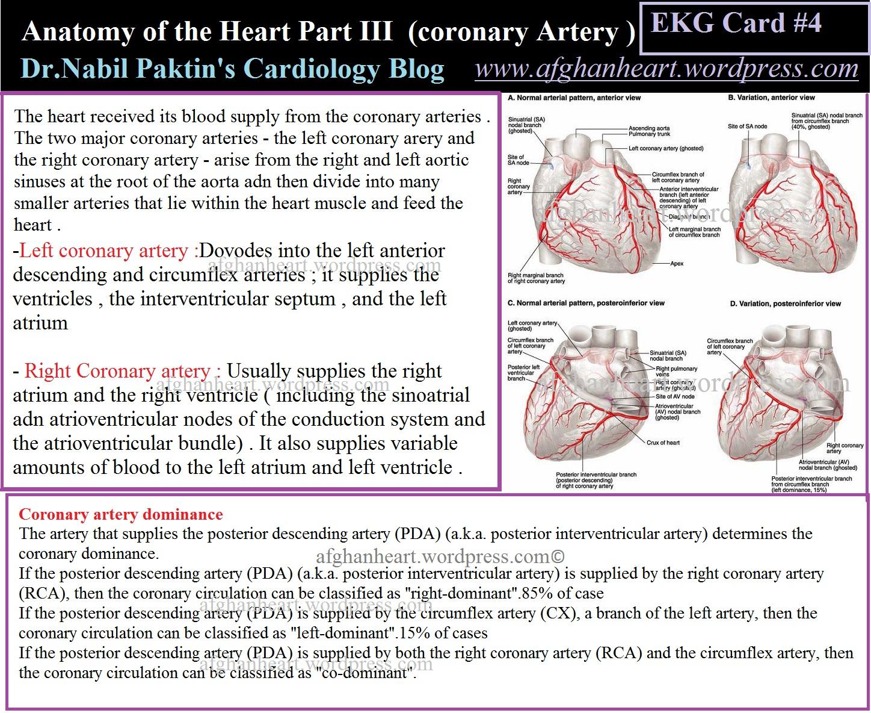 Dr.Nabil Paktin\'s Cardiology Blog مجله کاردیولوژی دکتور نبــیل ...