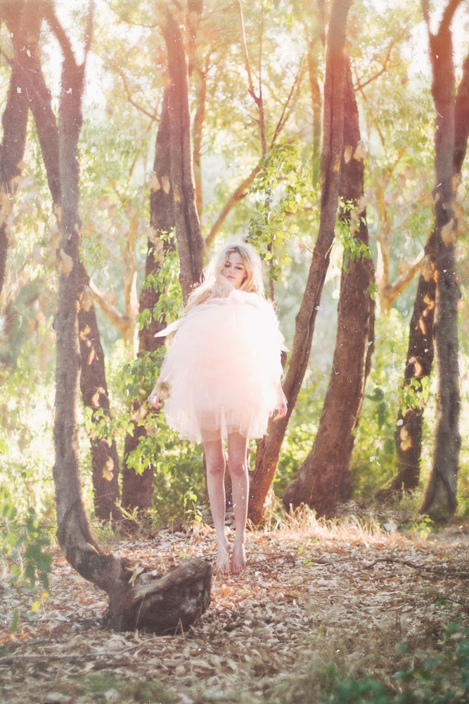 fairy in the forest amy scheepers photography
