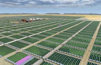 chile tiene que ser un pais productor de algas