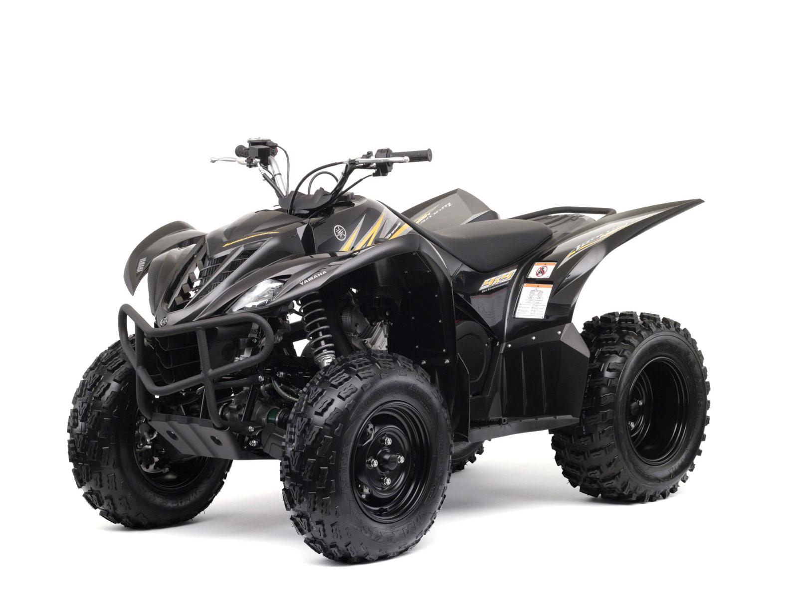Yamaha Wolverine  Specifications
