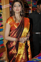 Pranitha in Lovely Kanjiwaram Saree ((23)000 008.jpg