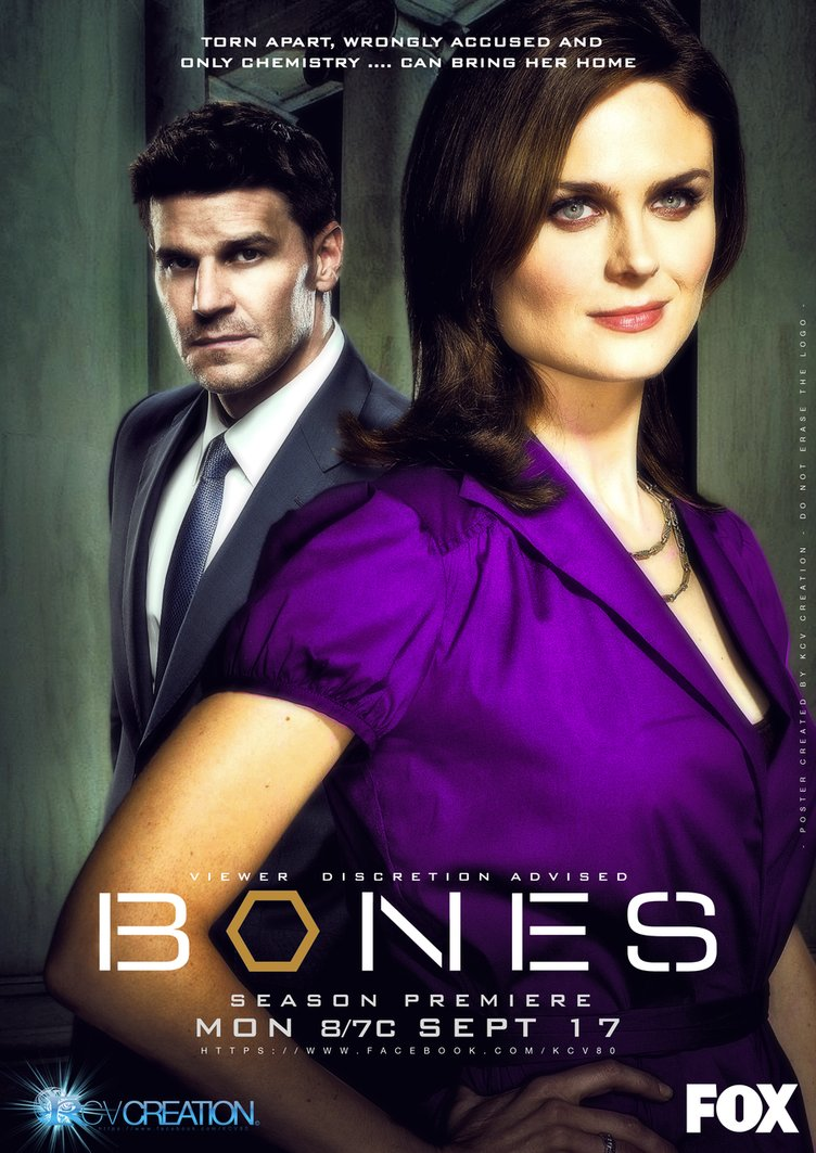 Download Bones 1ª à 8ª Temporada HDTV - Bluray - Torrent