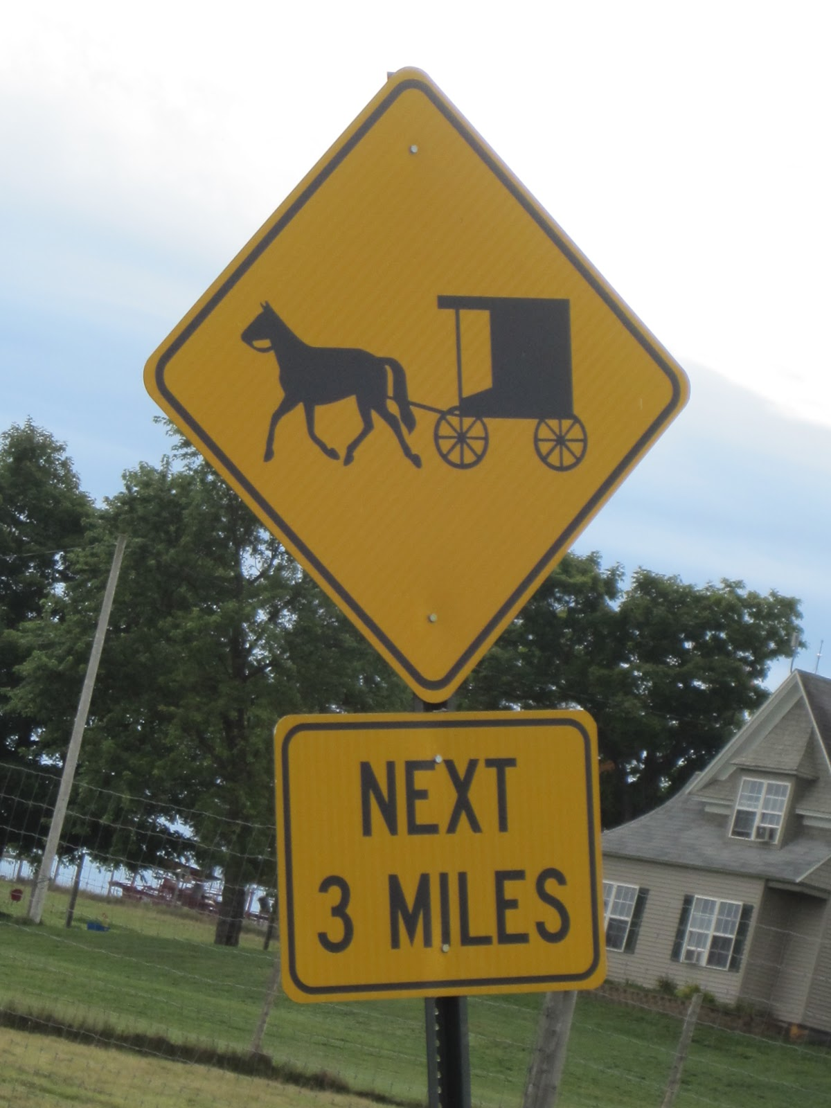 the ways of the amish Let's take a look into the amish way of eating it might not be the healthiest way of eating but they do have a wonderful combination of comfort food, healthy food and even home grown food.