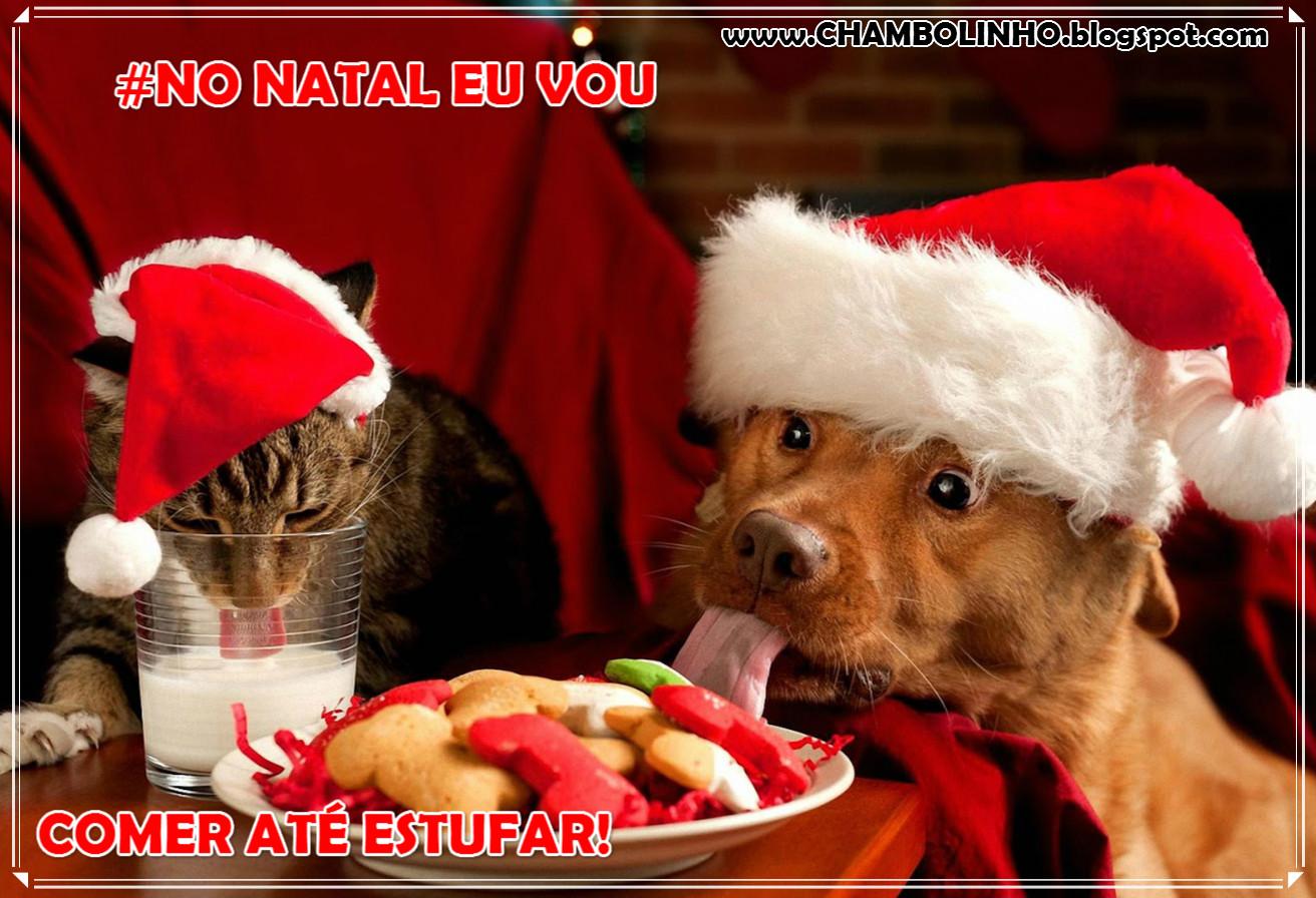 No Natal eu vou Recadinho Engraçado para Twitter Face Whats