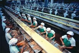 Definisi Tenaga Kerja dan Jenis Pengangguran