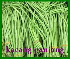 suplier sayuran dan buah jakarta