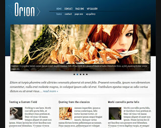 Orion Wordpress Theme