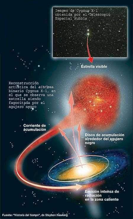 Resultado de imagen de Una estrella, como todo en el universo, está sostenida por el equilibrio de dos fuerzas contrapuestas; en este caso, la fuerza que tiende a expandir la estrella (la energía termonuclear de la fusión) y la fuerza que tiende a contraerla (la fuerza gravitatoria
