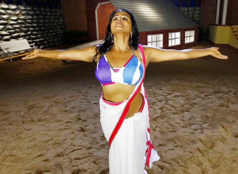 Actress Priyamani Spicy