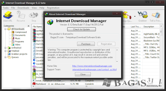 Internet Download Manager 6.12 Beta Build 17 Full Patch 2