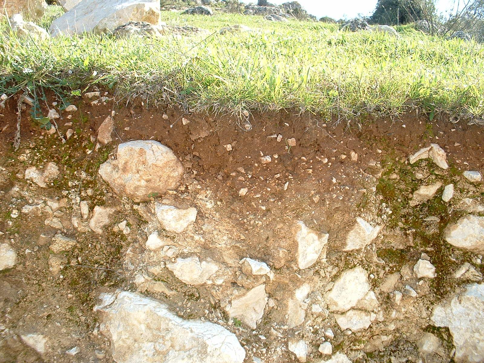 Collecta el suelo y su formaci n 2 tema 8 for El suelo y sus capas